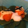 Salmalax med emulsion på mussla blomkålsskum och sotad purjolök
