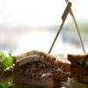 Club Sandwich - ett värdigt avslut på helgen