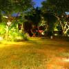 Gai pad krapow - het thaibasilikakyckling