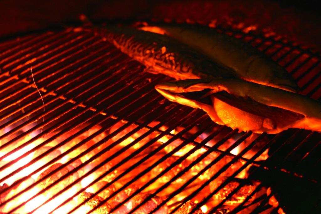 grillad makrill