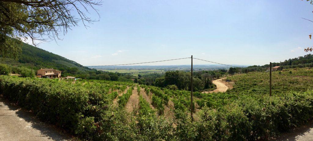 Toscana - Vicopisano
